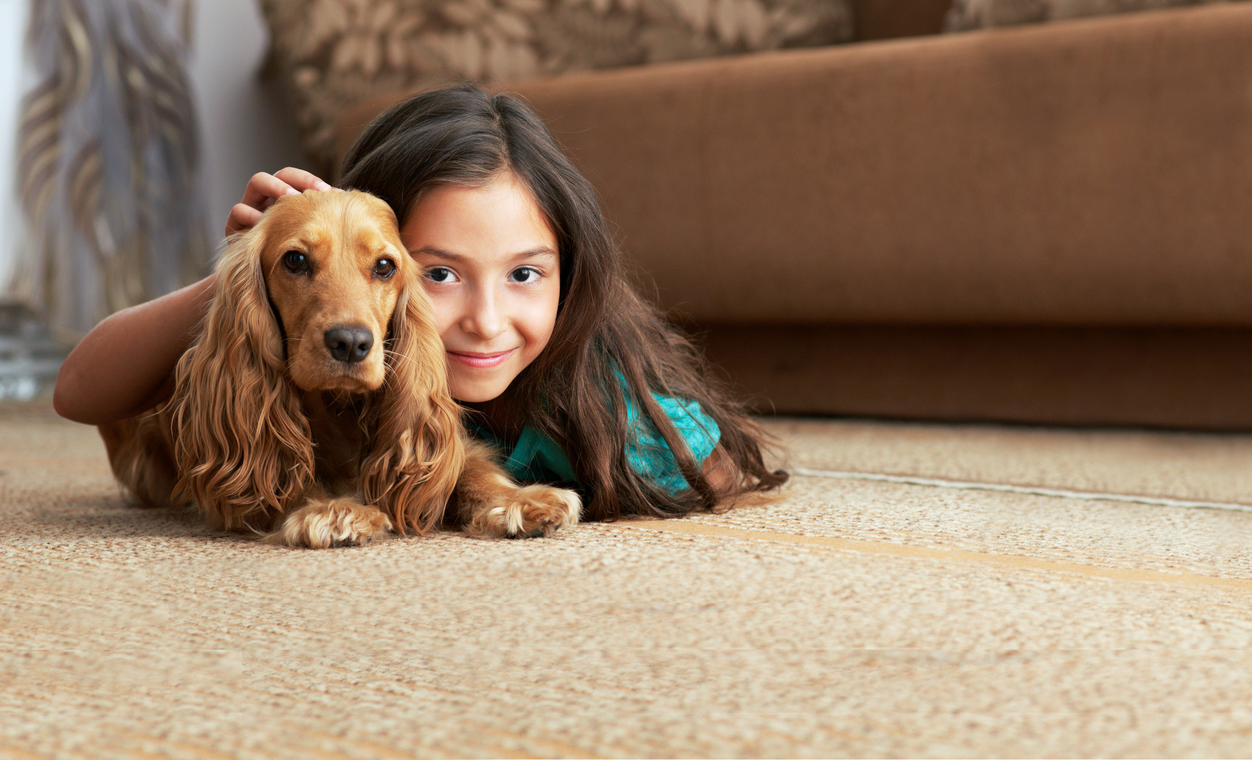 Girl With Dog On Carpet Chem Dry